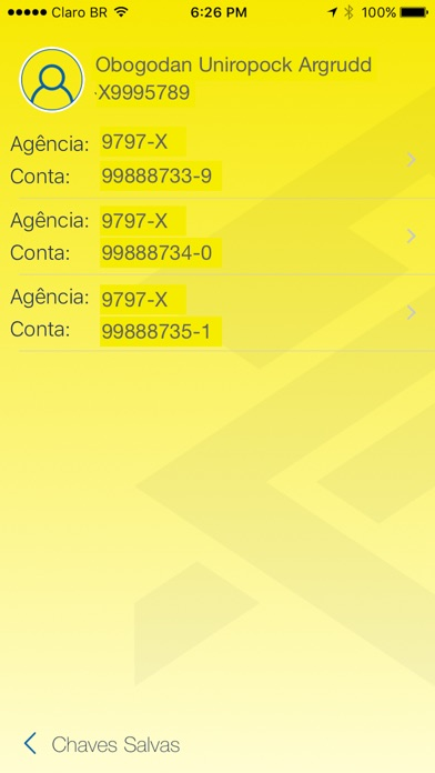 BB Gerenciador Financeiro PJ screenshot