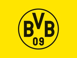 Fun stickers for BVB fans