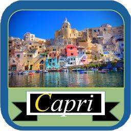 Capri Island Offline Map Guide