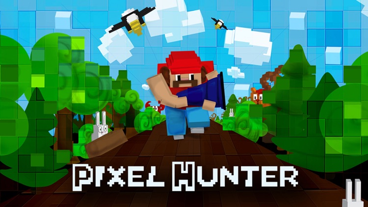 Pixel Hunter screenshot-0