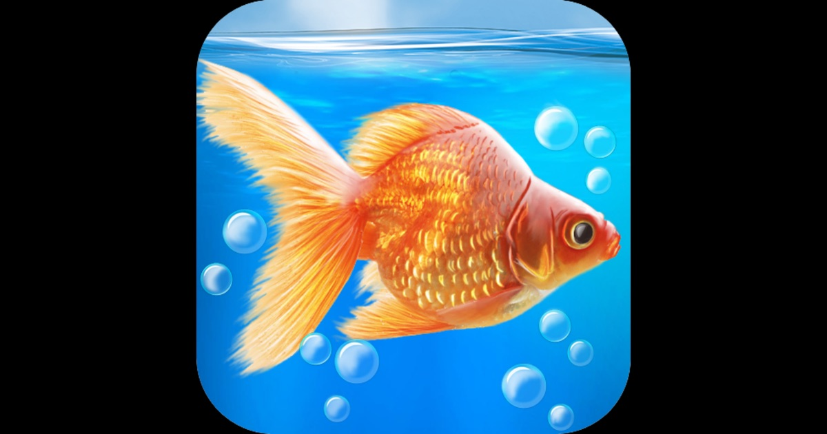 Goldfish aquarium 3d mac app store for Cuisine 3d mac os x