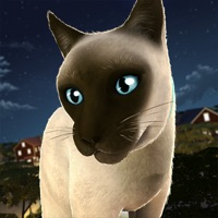 Codes for Running Cats - Survive The Free Kitty Cat Simulator Hack