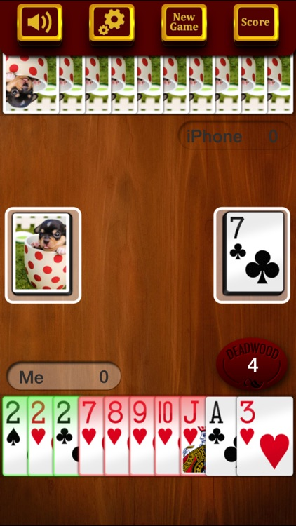Gin Rummy Deluxe - The Best Classic Card Game