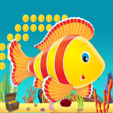 Activities of Plappy Fish New
