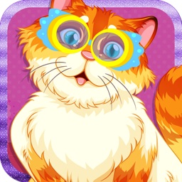 Crazy Kitty Dress Up Hidden Objects & Paintings