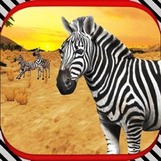 Activities of Zebra Horce Simulator 3D