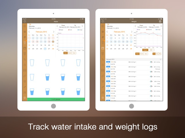 Daily Carb Pro For Ipad Carbs Counter Tracker 4