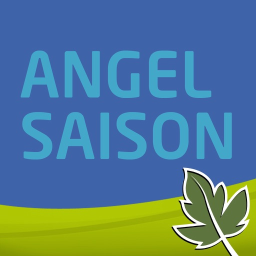 Angel Saison