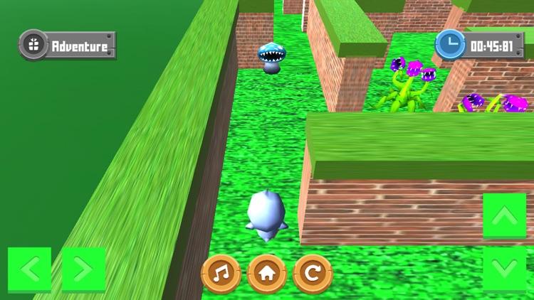 Adventure Maze 3D screenshot-3