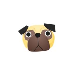 Kyoto Pug
