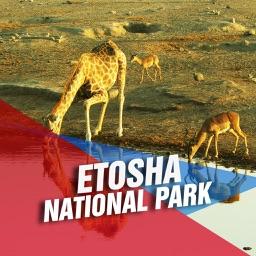 Etosha National Park Tourism Guide