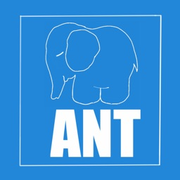 ANT attention test