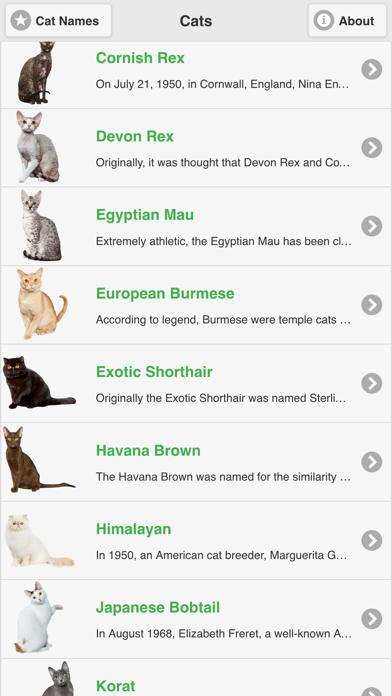 Cat Breeds Free screenshot one