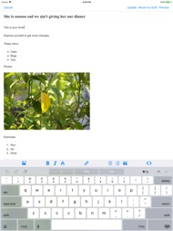App for Blogger Blogspot ipad images