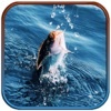 Real Wild Fishing Ace: Catch Paradise