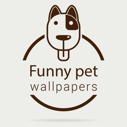 Pet Wallpapers HD - Funny & Cute Pictures of Pets