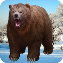 Wild Bear Animal Survival 3D