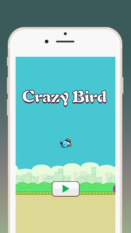 Crazy Bird:Flying bird screenshot-3