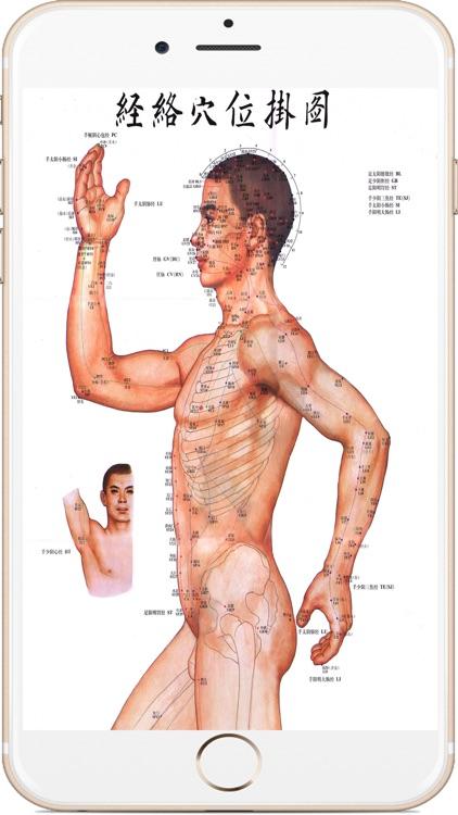 全套高清人体穴位图