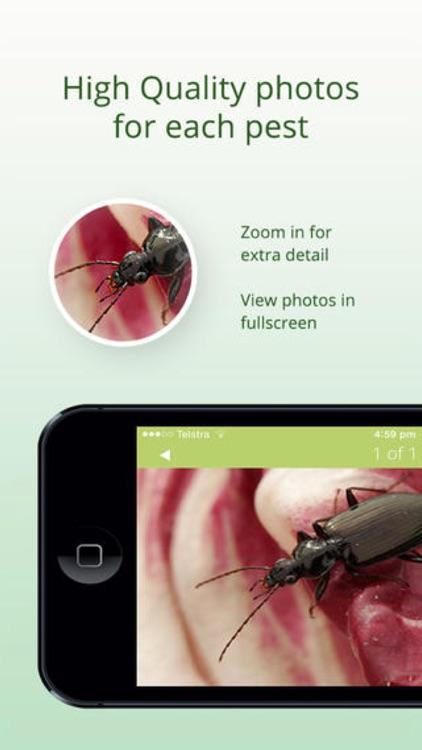 Veg Pest ID