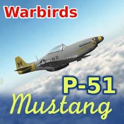 Warbirds P-51 Mustang lite