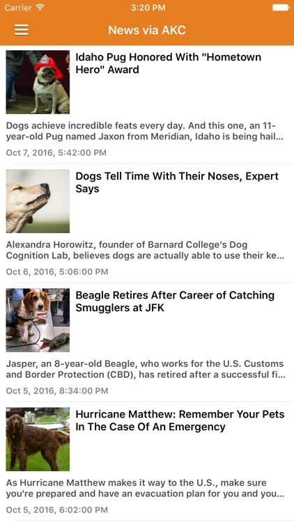 Dog News & Puppy Training Tips Pro