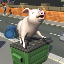 Bed Piggy pet simulator games