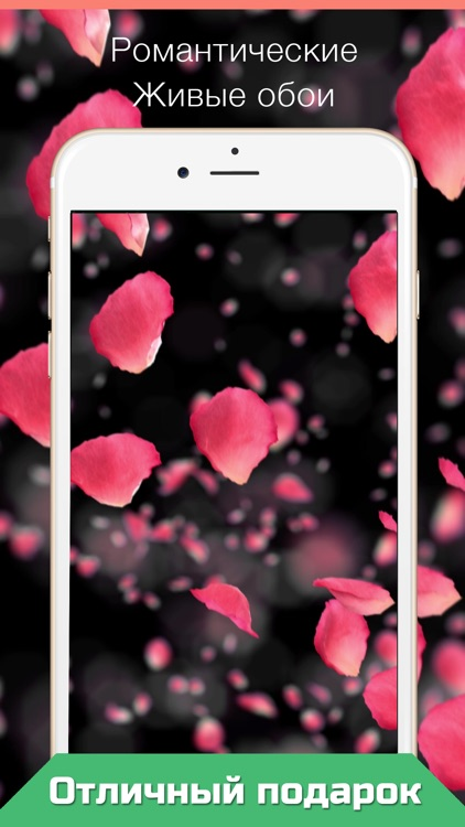 Live Wallpapers for iPhone animated wallpapers HD screenshot-3