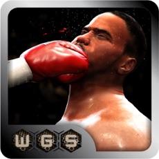 Activities of Deadly Virtual champion internatinal Boxing