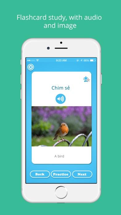 Vietnamese Vocabulary - Study Vietnamese language screenshot three