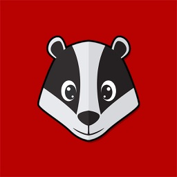 Badgers Football Stickers