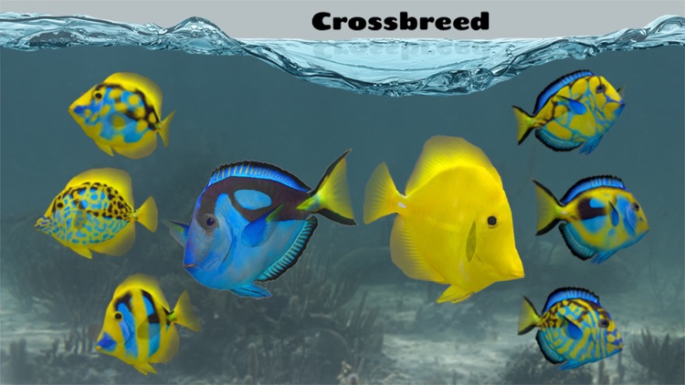 Fish Farm 2 screenshot-3