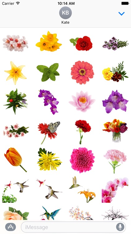 Spring Flowers Stickers for iMessage