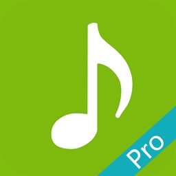 DM无线音乐Pro