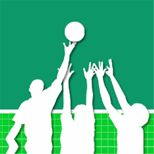 volleyballserver.de icon