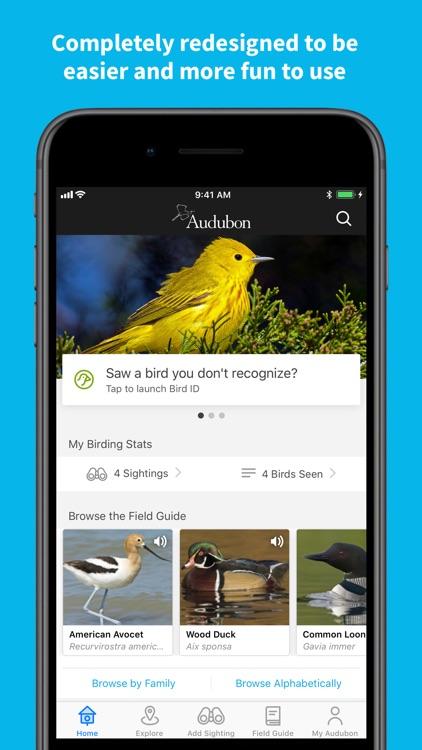 Audubon Bird Guide