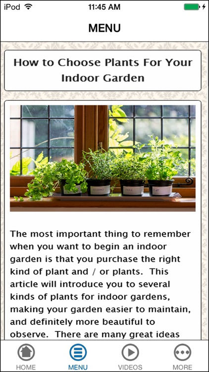 Learn Indoor Gardening for Every Month of The Year