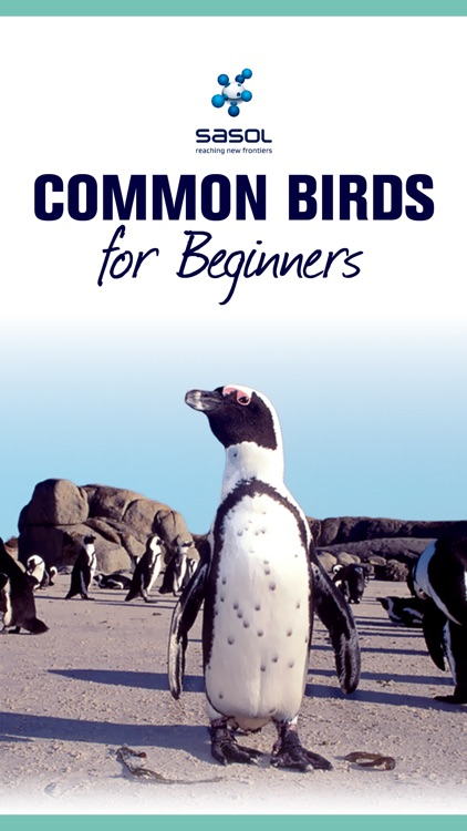 Sasol Common Birds for Beginners (Full): Quick facts, photos and videos of 46 common southern African birds