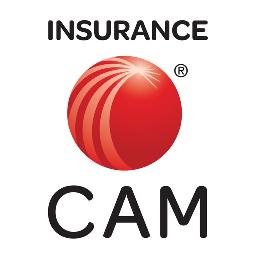 LexisNexis Insurance CAM icon