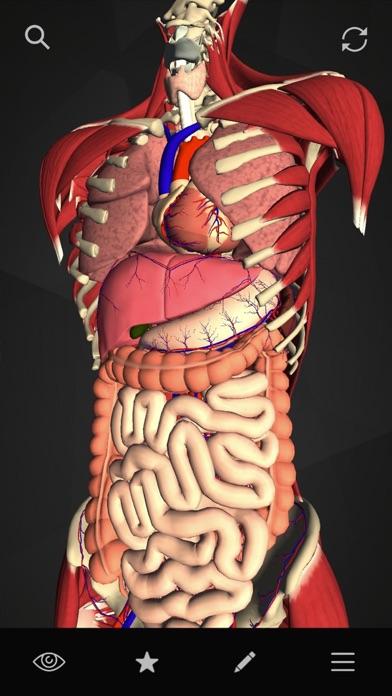 teamLabBody-Internal Organs-のおすすめ画像1