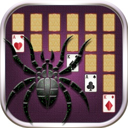 Spider Solitaire: a patience game