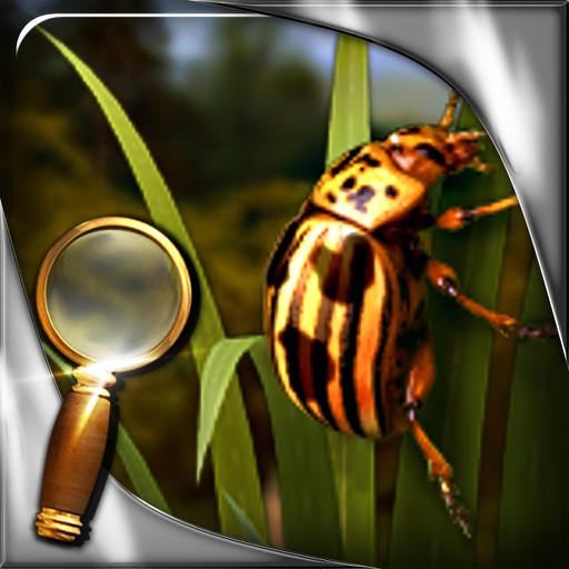Treasure Island - The Golden Bug - Extended Edition - A Hidden Object Adventure