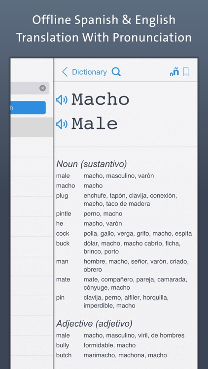 Spanish Dictionary | Offline Translation With Pronunciation screenshot-0