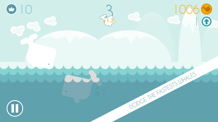 Speedy Whales