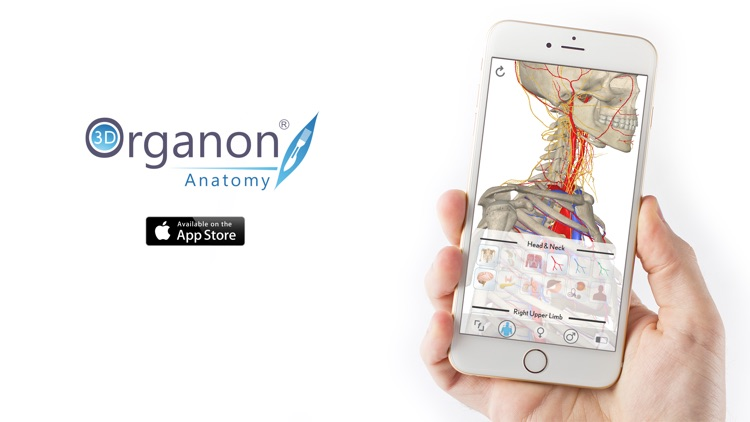 3D Organon Anatomy - Brain and Nervous System screenshot-3