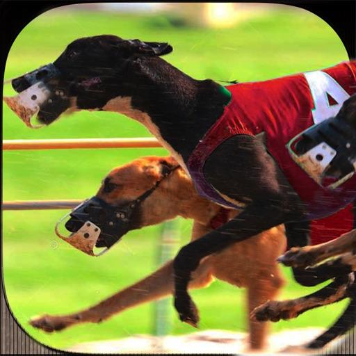 реальная дикая собака гонки 3D симулятор 2 016