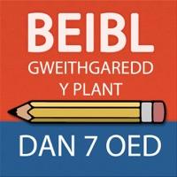 Codes for Beibl Gweithgaredd y Plant Lleiaf i blant dan 7 oed Hack