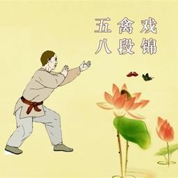 五禽戏八段锦太极拳保健操