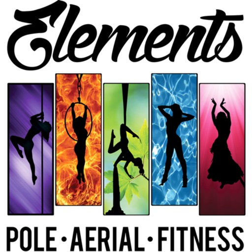 ElementsPoleAerialFitness