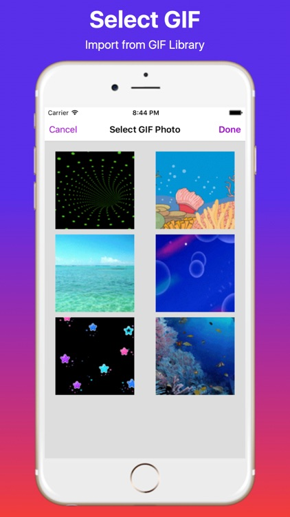 GIF to Video Maker Pro screenshot-3